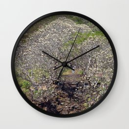 Flowering Blooming Tree, Champasak, Khmer temple complex, Laos Wall Clock