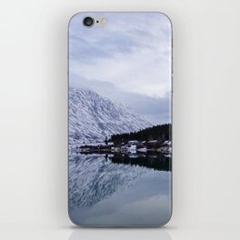 Reflective Contrast iPhone Skin