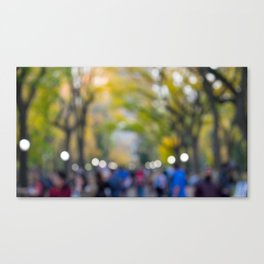 Central Park Fall Series 7 Canvas Print