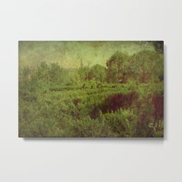 vintage romantic old landscape photography Metal Print