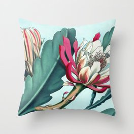 Flowering cactus III Throw Pillow