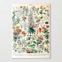 Adolphe Millot - Fleurs B - French vintage poster by dejavustudio