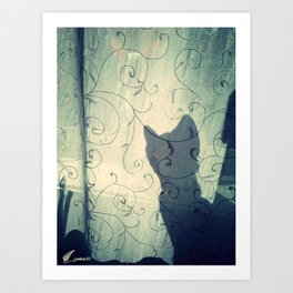 Cat in the  shadow Art Print