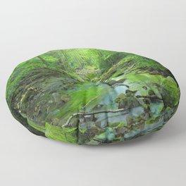 Rocky Forest Creek Floor Pillow