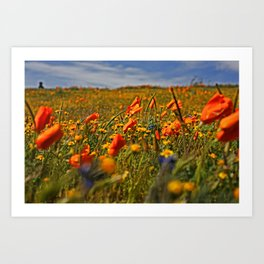 Color the fields of Lancaster California Art Print