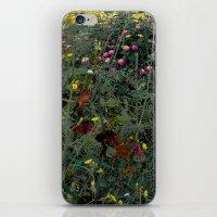 wild things iPhone & iPod Skins featuring Wild Things by Elizabeth Seward