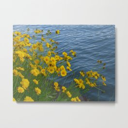 Yellow Flowers by the Water Metal Print