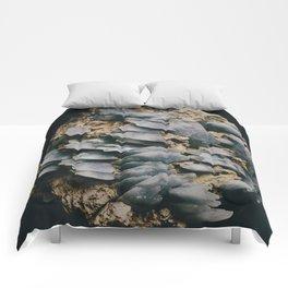 Celestine II Comforters