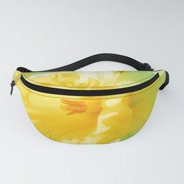 Closeup Narcissus 3 Fanny Pack