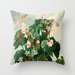 Pink Floral The Oblique-Leaved Begonias : Temple of Flora Throw Pillow