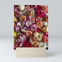 roses Mini Art Print