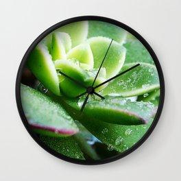 Drops of Dew Wall Clock