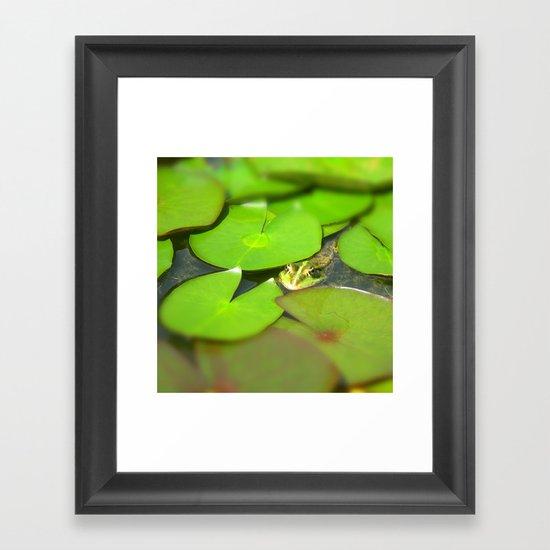 green frog I Framed Art Print