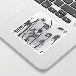 Tropical Storm Sticker
