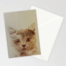 Cats: Portrait British Shorthair Stationery Cards
