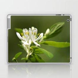 Honeysuckle Flowers Laptop & iPad Skin