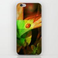 ladybug iPhone & iPod Skins featuring Ladybug  by SensualPatterns