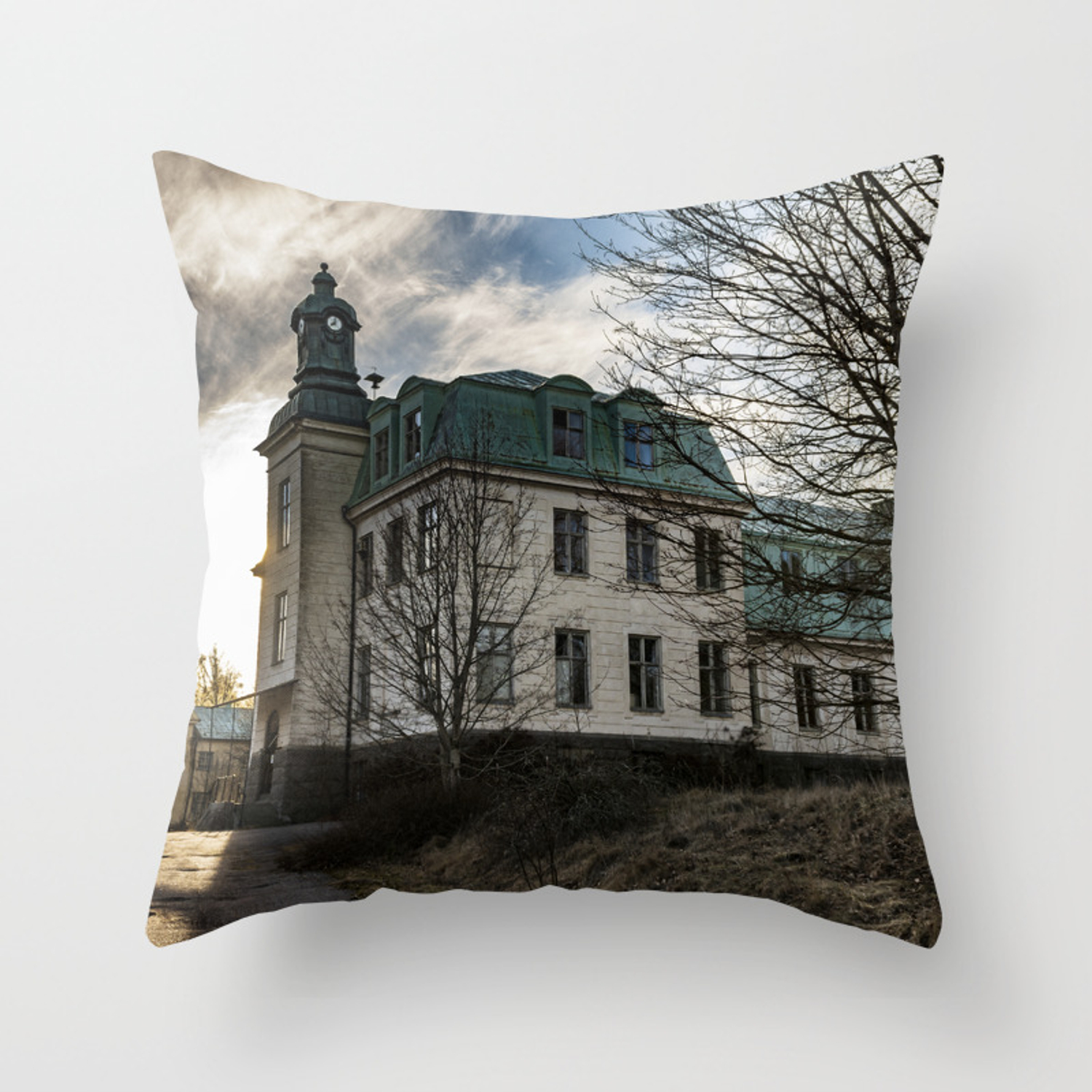 The Mental Hospital Throw Pillow By Jockelind Society6