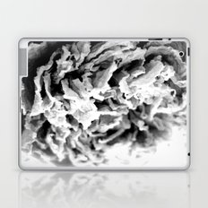 Black and White Dried Peony Laptop & iPad Skin