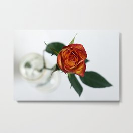 The rose in the beer glass Metal Print