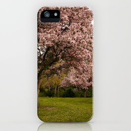 Magic Garden iPhone Case