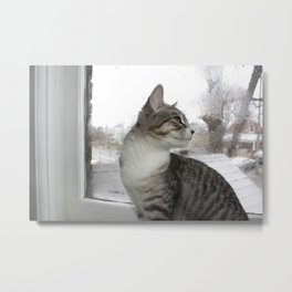 Caspian (100% of proceeds donated to charity) Metal Print