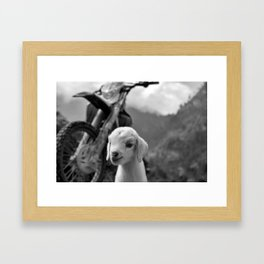 Dirt Bike Kid Framed Art Print