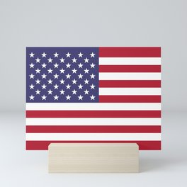 American Flag Scale G-spec 10:19 Mini Art Print