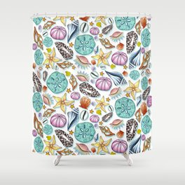 Illustrated Seashell Pattern Shower Curtain