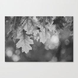 Autumn Leaf (Black and White) Canvas Print