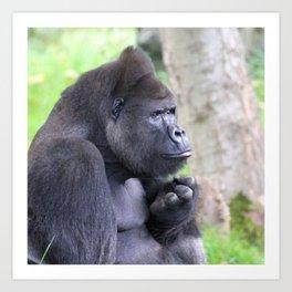 Gorilla 519-2 Art Print