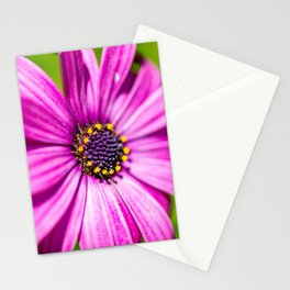 Macro flowers of Madeira Stationery Cards