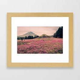 Fuji Shiba-zakura Framed Art Print