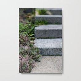 Garden Steps Metal Print