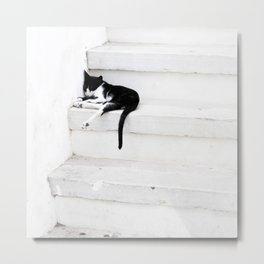 Black on White 2 Metal Print