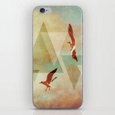 | G U L L S | iPhone & iPod Skin