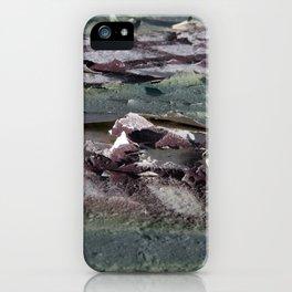 Landscape 3310C iPhone Case