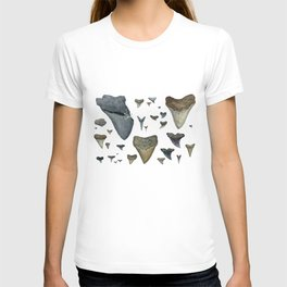 Fossil shark teeth watercolor T-shirt