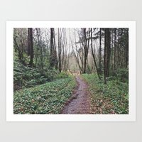 Into the Woods 2 Art Print