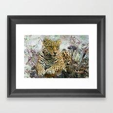 Lingering Leopard Framed Art Print
