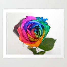 A Rainbow Rose Art Print