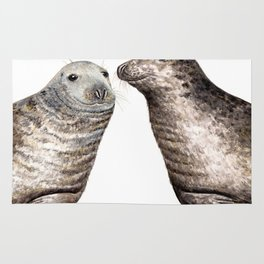Grey seals(Halichoerus grypus) Rug