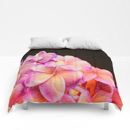 Plumeria Comforters