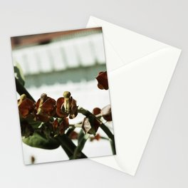 Strange Flower with Brick Wall Stationery Cards