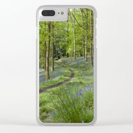 Along the Winding Path Clear iPhone Case
