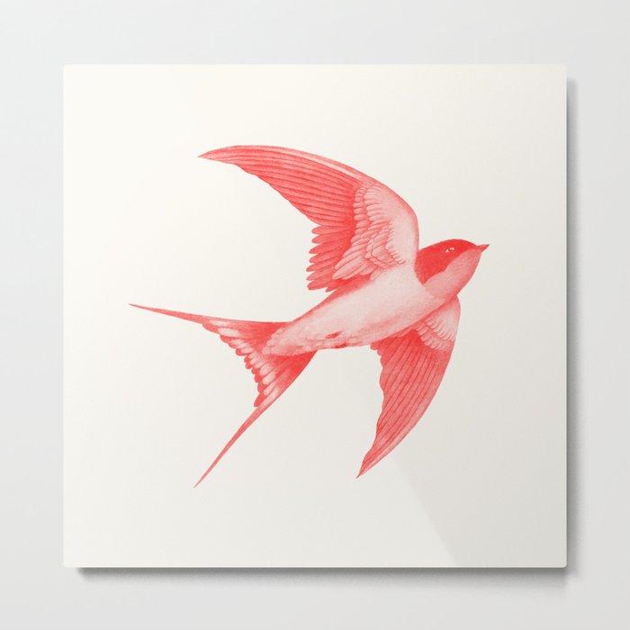 Barn Swallow (red) Metal Print