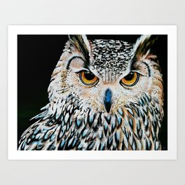 Owl portrait, acrylic on canvas Art Print