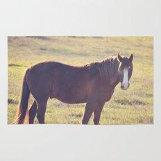 Chesnut Horse Rug