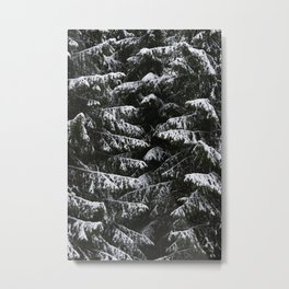 Melting of the snow in forest. Metal Print