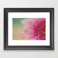 Pink bursts, Floral Macro Photography Framed Art Print
